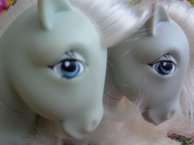 macaulike-eyes.jpg